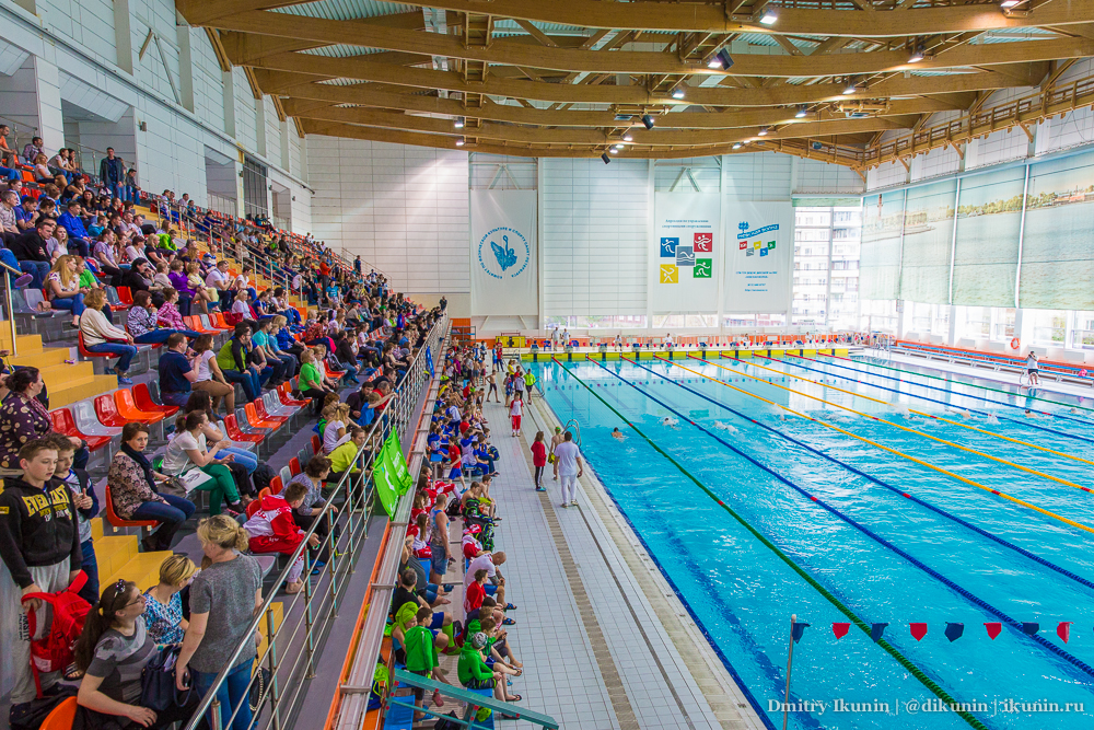 Первенство Санкт-Петербурга по плаванию