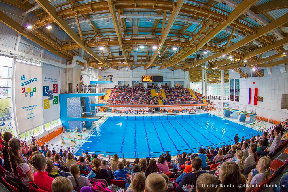 Первенство России по прыжкам в воду