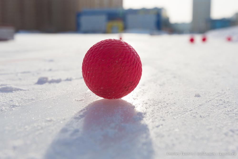 Хоккей с мячом